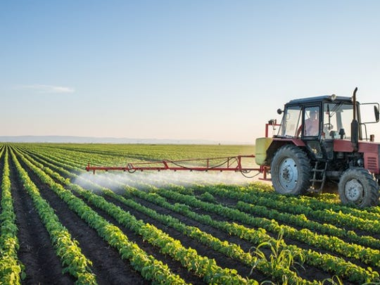 A tractor spraying crops to incite growth.