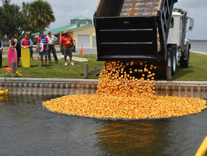 The 20th Annual Great Brevard Duck race was held Sunday,