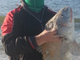 Paul Jones caught this 30-pound, 40-inch black drum