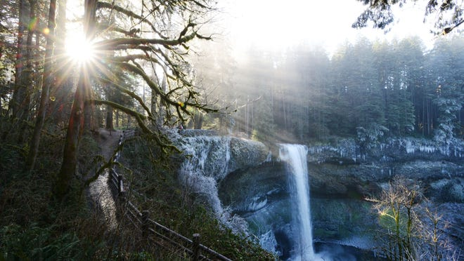 Sunlight shines through the trees as seen from a viewpoint at Silver Falls State Park on a cold, icy morning Jan. 1.