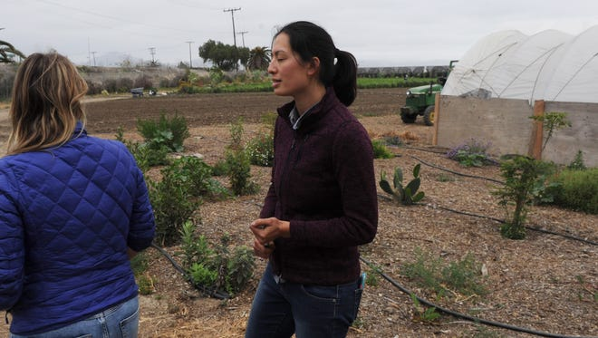 Lola West, left, marketing  manager and communications specialist and Jeannette Ban, field coordinator at The Abundant Table, work at the native plant garden.