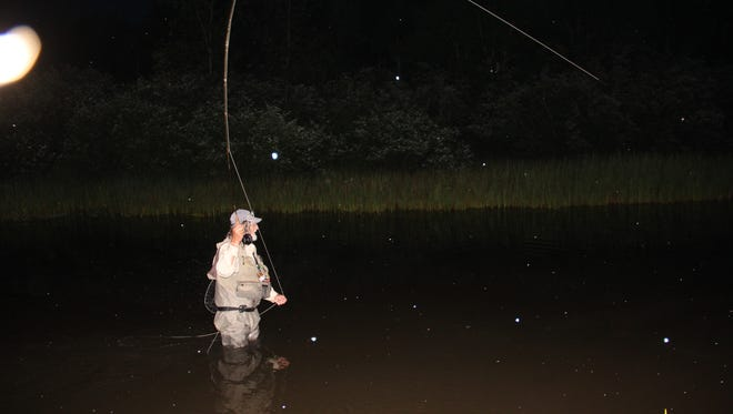 Bill Heart of Ashland casts for trout on Independence Day as insects take flight on the White River in northern Wisconsin.