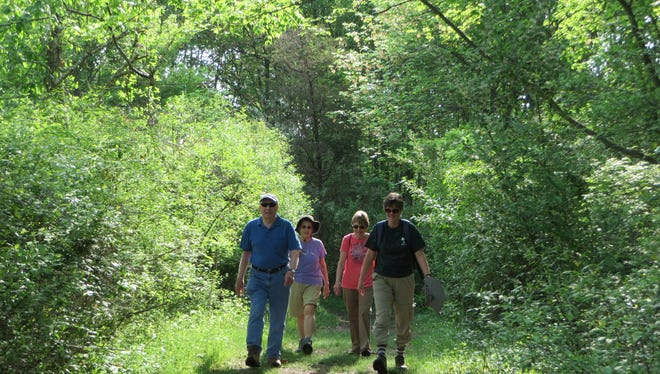 Naturalist-led forest fitness walks take place during fall, winter and spring at the Environmental Education Center, 190 Lord Stirling Road, Basking Ridge.