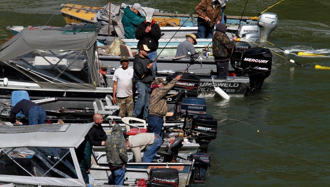 """In this May 5, 2011, file photo, fishermen in motorboats form a """"hog line"""" during the Spring Chinook Salmon run on the Willamette River in Oregon City, Ore."""