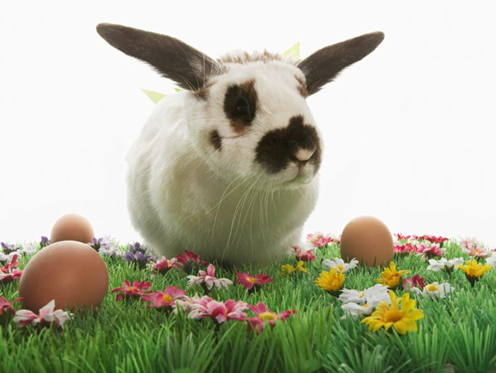 Easter and Passover arrive close together on the calendar,