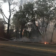 Vegetation fire on Victor Avenue shuts down block to traffic