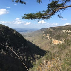 Mom: Georgia's Cloudland Canyon State Park is a slice of paradise south of Chattanooga