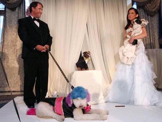 """Jake Pasternak, from Richmond, Va., stands with his poodle Chilly, as Wendy Diamond, of New York, holds her Coton de Tulear Baby Hope Diamond during their dogs' """"wedding"""" officiated by Triumph the Insult Comic Dog, played by comedian Robert Smigel (center) in New York."""
