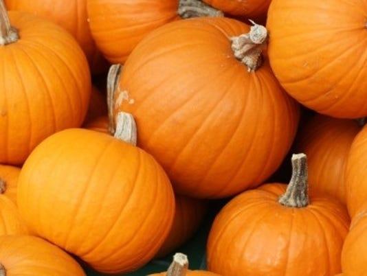 1018-ynmc-pumpkins.jpg