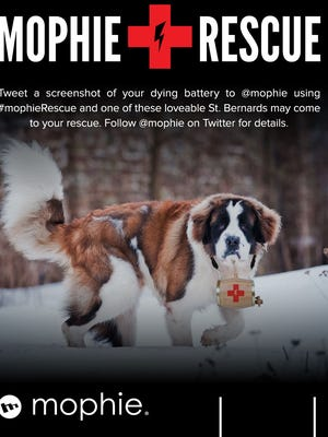 A Mophie St. Bernard rescue dog that will take Mophie power solutions to smartphone users needing a battery recharged at South By Southwest.