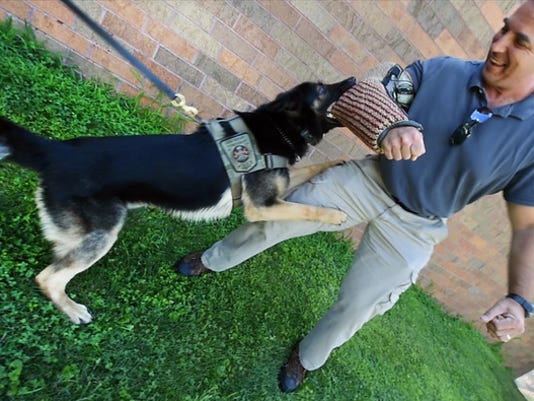 York Daily Record reporter Ted Czech acts as a test subject for Tazer's holding ability at the Newberry Township Police Department Tuesday July 14, 2015.  Paul Kuehnel - York Daily Record/ Sunday News