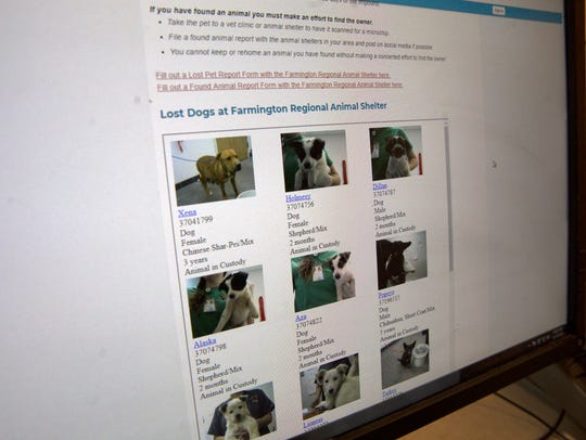 A lost and found page for the Farmington Regional Animal Shelter is displayed.