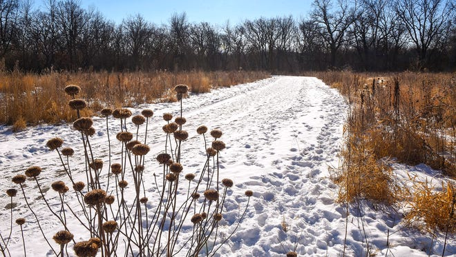A path from the parking lot leads to the Sauk River at Sauk River Regional Park, shown Friday, Feb. 9, in Sartell.
