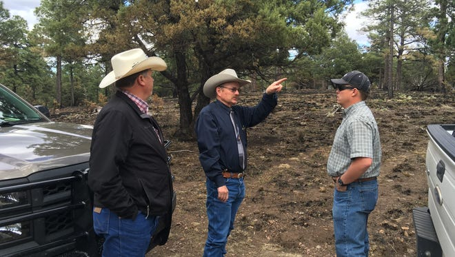 Sheriff Robert Shepperd points in the direction of the point of origin of last month's wildfire as he toured the burn area with Public Lands Commissioner Aubrey Dunn, left, and Mark Naranjo of the land trust's Roswell office.