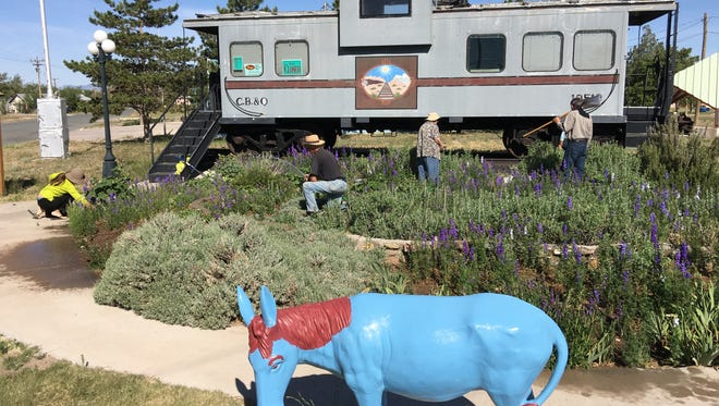 """Members of the loosely organized Carrizozo Garden Club, led by its """"unofficial president"""" Carrie Scott, cultivate the larkspur in front of the historic caboose that houses the town's chamber of commerce."""