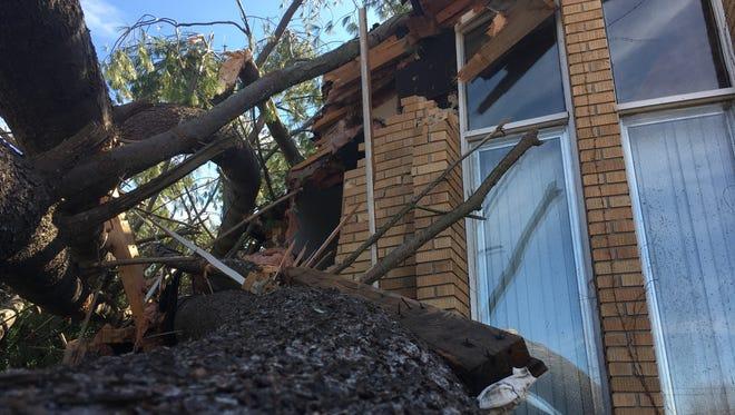 A tree crashed into the Kenilworth Drive home of Jeffrey Joyal and Cindy Rice-Joyal on Wednesday night.