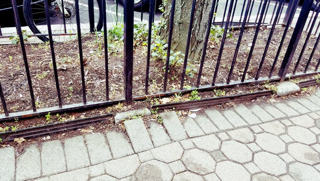 Somerville will be improving its Main Street sidewalks, removing the wrought-iron borders around trees and replacing 19 trees.