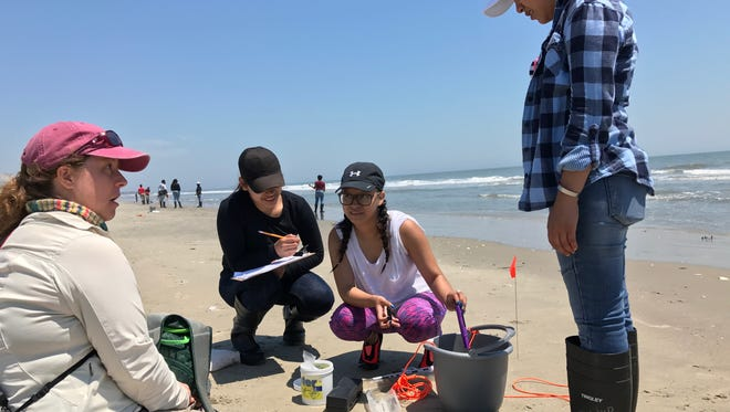 The Nature Conservancy Education Coordinator Jen Davis helps Nandua High School students, from left, Emily Haro, Ana Francisco-Aguirre and Rosemary Lopez collect water quality samples on Parramore Island on May 17. For many students, the trip marked their first time visiting one of the Eastern Shore's barrier islands.