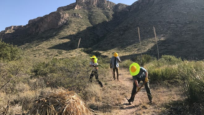 Students who are volunteering with the Student Conservation Association work on trails at Carlsbad Caverns National Park.