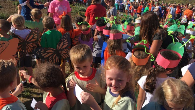 First graders at Union Elementary School prepare to launch butterflies.