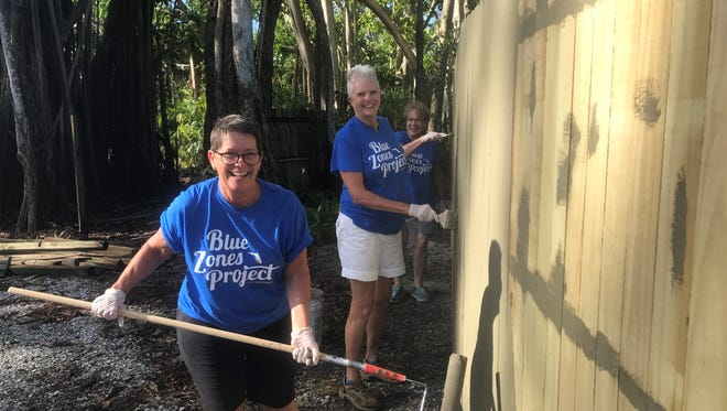 Volunteers with the Blue Zones Project of Southwest Florida help clean up the Naples Zoo after Hurricane Irma hit Sept. 10, 2017.