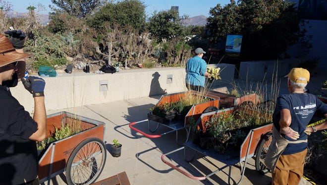 Groups work to plant the demonstration garden at the Channel Islands headquarters.