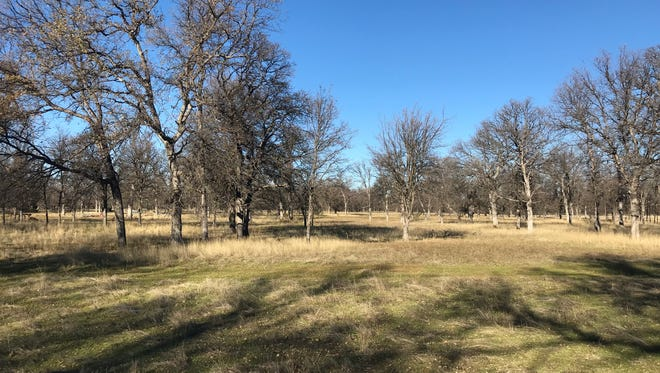 A developer wants to build 166 homes on 715 acres about 5 miles east of Redding.