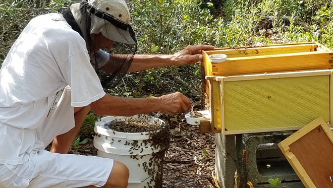 "Mike Macklin and Kathleen Euler will present ""Backyard Honey Beekeeping"" Jan. 24 at the Environmental Studies Center."