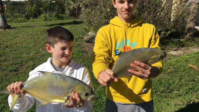 Sam and Henry both caught nice pompano on a windy day fishing. Sam caught the biggest fish of the day with his pompano.