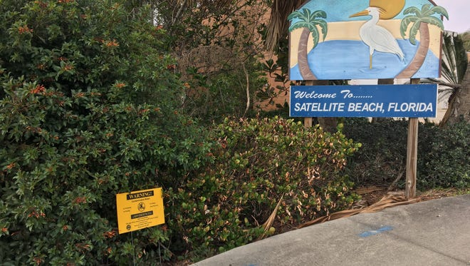 Signs warned this week that canals in the Satellite Beach and Indian Harbour Beach area were not safe for recreation because of a sewage spill. There is a canal behind the brush near the city of Satellite Beach's sign.