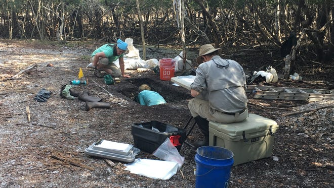 Archaeologists from the University of Florida are among those who have found key items about the Calusa. Work of archaeologists is a theme of a spring break program at the Mound House on Fort Myers Beach.