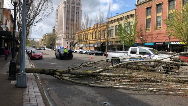 A tree fell on Liberty Street NE, police have two lanes blocked.