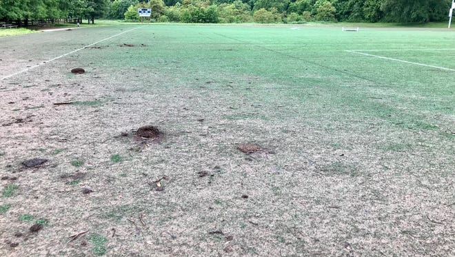 Some of the artificial turf soccer fields at the John B. Lewis Soccer Complex in East Asheville remain covered in river silt nearly a month after flooding caused by the remnants of  sub-tropical storm Alberto.