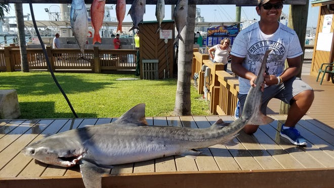 Justin Smith, 13, a student at Delaura Middle School, recently landed a 200-pound, plus tiger shark.