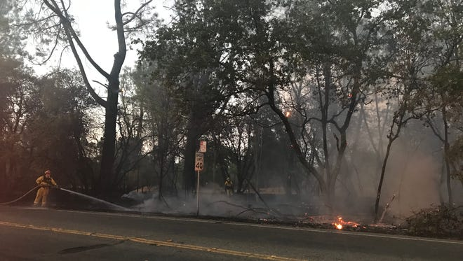 A vegetation fire on Victor Avenue briefly shut down traffic as firefighters worked to extinguish the fire.