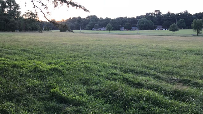Mt. Gretna residents have agreed to purchase the Soldiers Field land for about $1 million in order to control development in the area.