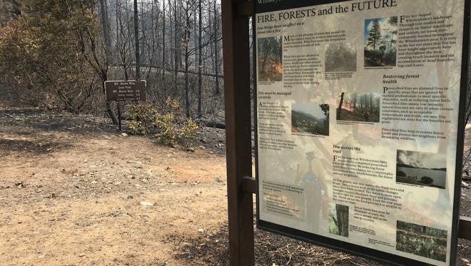 An kiosk with information on the role of fire in the forest, located along Paige Bar Road, at Whiskeytown National Recreation Area survived the Carr Fire, but much of the surrounding forest did not.