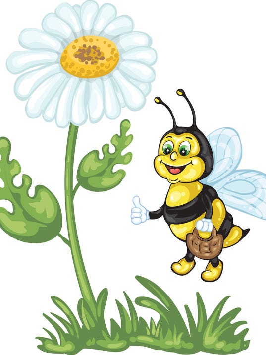 Illustration of cute bee and daisy flower