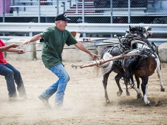 File photo from the 2017 Delaware County Fair Pony Pull.