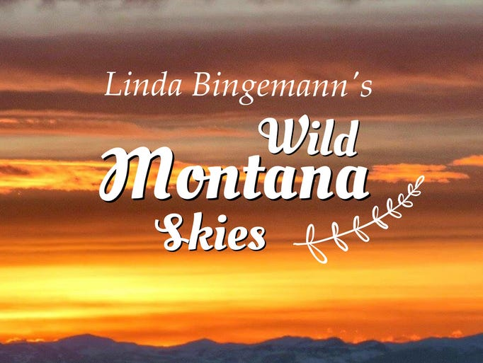 Wild Montana Skies by Linda Torstveit Bingemann of