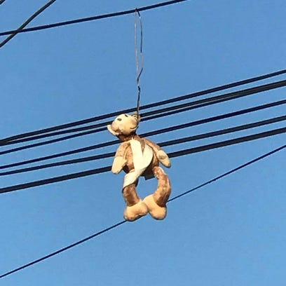 Stuffed monkey hanging from powerlines in apartment