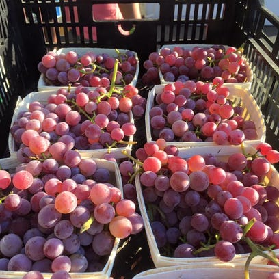 """Caradonna Farm's grapes are """"over the top"""" -- you can"""