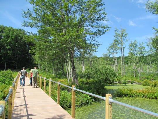 This photo shows the new boardwalk at Stewart State Forest in New Windsor.