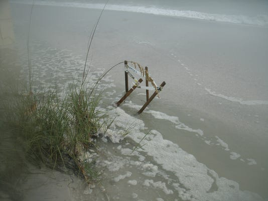 flooded-sea-turtle-nest3.jpg