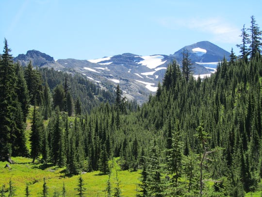 Middle Sister rises above a meadow along the Pacific