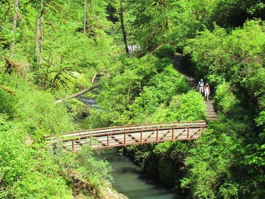 Silver Falls trails were a popular draw on a warm, Mid Valley day.