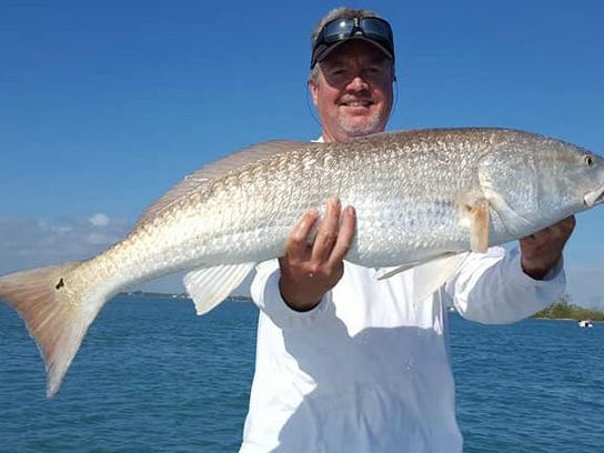 redfish coomber