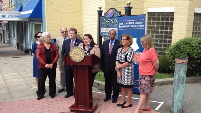 Westchester Legislator Catherine Borgia, D-Ossining, speaks at a press conference Friday, June 27, 2014, urging the county to stay in the Community Development Block Grant program. County Executive Rob Astorino has said the county will pull out of the program.
