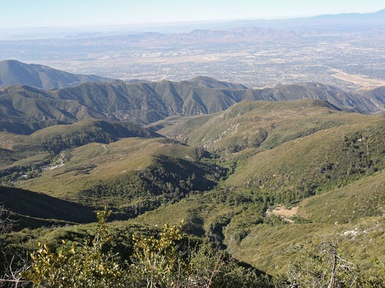 Nestle draws water from wells near this area in the San Bernardino National Forest.