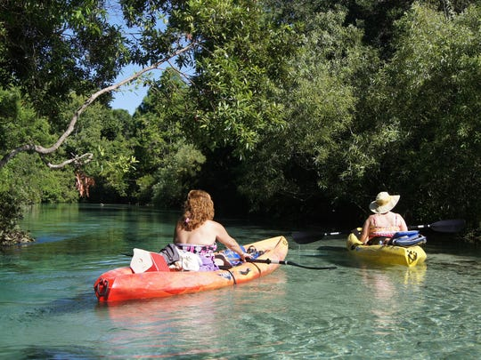 The Weeki Wachee Spring flows into the river with the same name creating a slow, easy, five-mile, three-hour kayak or canoe paddle downstream. The translucent water and sandy bottom create a dazzling experience on one of Florida's best rivers.